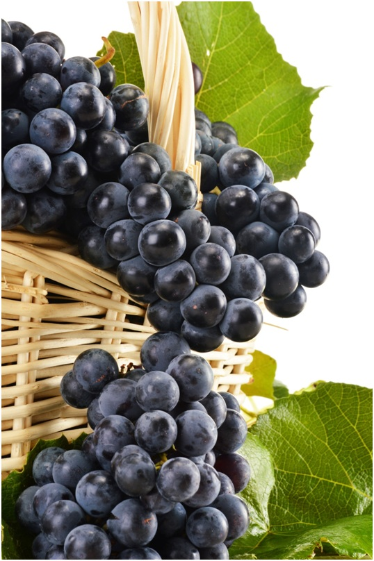 Resveratrol-Rich Diet